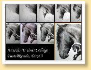 Entstehungsphasen einer Friesen-Collage, Ausschnitt aus DinA3